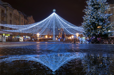 netting: Netting with lights. Christmas decoration. Night scene.