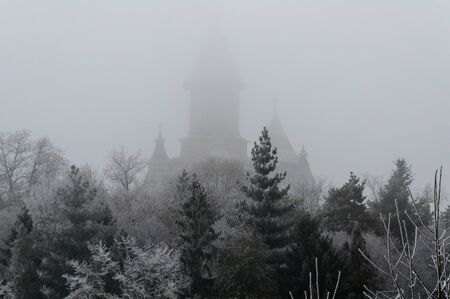 Beyound the trees a church in the mist. Winter scene. Metropolitan Orthodox Cathedral from Timisoara