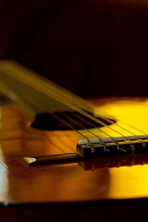 Macro Guitar and Reflections