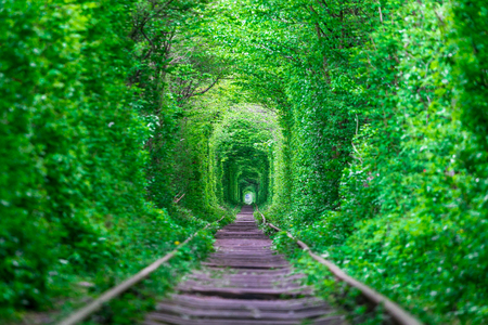 A railway in the spring forest tunnel of love 版權商用圖片 - 78961171