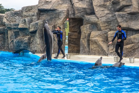 BATUMI, GEORGIA-JULY 9 2015 Instructors perform with trained dolphins inthe Batumi Dolphinarium
