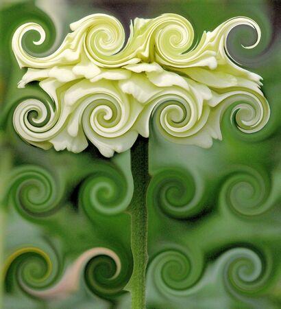 Abstract Flower Art Reklamní fotografie