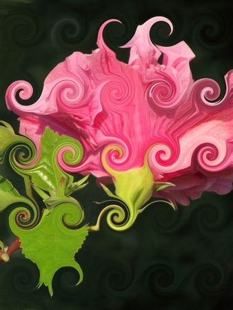 Abstract Pink Flower
