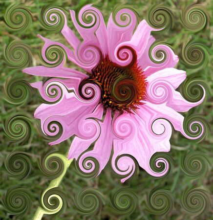Abstract Flower With Pink Petals