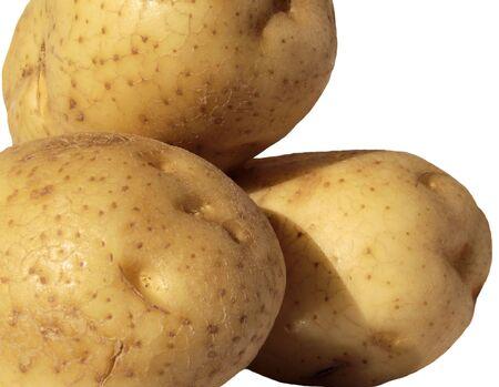 Fresh Organic Field Potatoes photo
