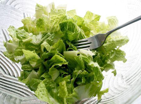 Fresh Garden Salad Ready To Eat