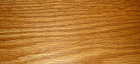 Kitchen Cabinet  Wood Panel Stock Photo - 8730448