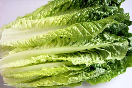 grocer: Fresh Organic Romaine Lettuce