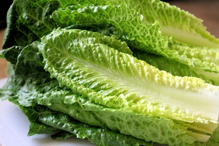 Fresh Romaine lettuce leaves on cutting board