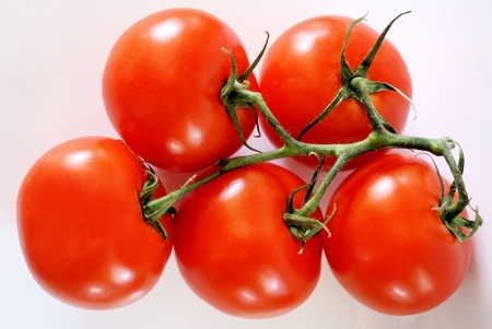 ripe: Fresh Ripe Tomatoes  Stock Photo