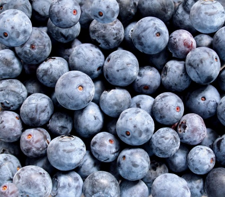Fresh Ripe Blueberries photo