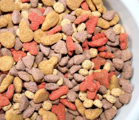 kibble: Cat Kibble Stock Photo