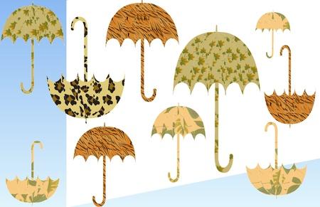 Funky Umbrellas