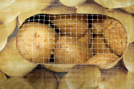 bagged: Bagged Potatoes With Mesh Opening