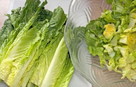 romaine: Romaine Lettuce Hearts For Making Salad  Stock Photo