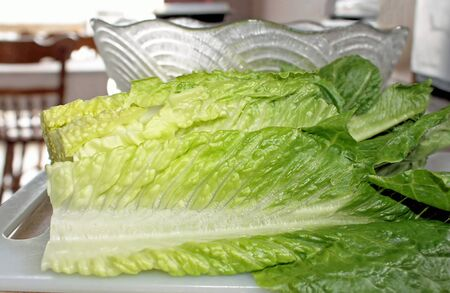 romaine: Salad Preparation In Kitchen - using leafy Romaine lettuce as salad ingredient