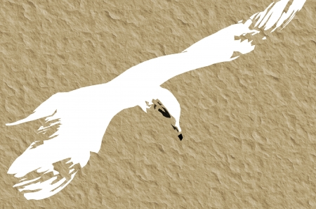 Seagull In Flight - abstract