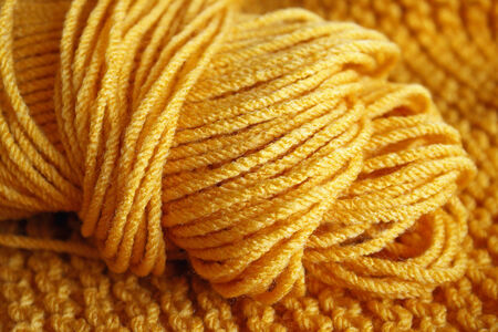 yellow fleece: Skein of Yarn in Yellow Gold