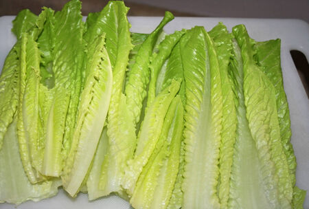 Romaine Lettuce Leaves On Cutting Board Фото со стока - 30633389