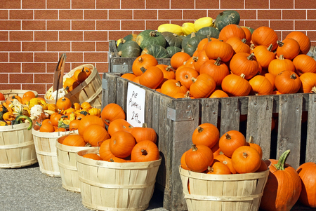 gourds: Pumpkins And Gourds For Sale at an outdoor Farmers Market