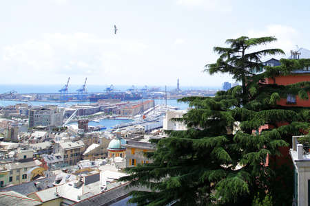 sunny day: puerto italiano de G�nova barco de contenedores de carga en un d�a soleado