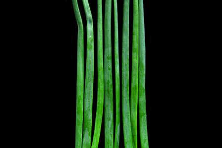 Bacground: fresh wet onion greens isolated on black bacground