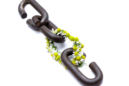 well made: a chain is only as strong as its weakest link proverb one link made of flowers Stock Photo