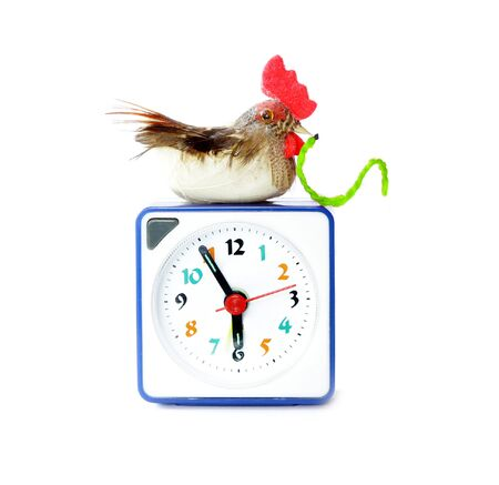 gets: Early bird catches gets the worm proverb representing alarm clock on 6 am with bird and maggot in neb