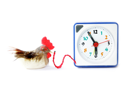 Early bird catches gets the worm proverb representing alarm clock on 6 am with bird and maggot