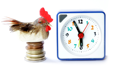 proverb: Early bird catches gets the worm proverb representing alarm clock on 6 am with bird and money Stock Photo
