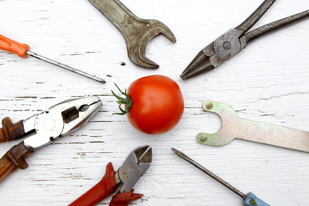 saying if it ain't broke, don't fix it metaphor with whole tomato and tools