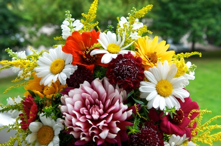 kamille: Big colorful flower bouquet from different flowers with green blur background