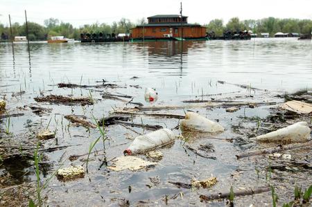 ecological disaster on river Sava in Belgrade, Serbia, Europe