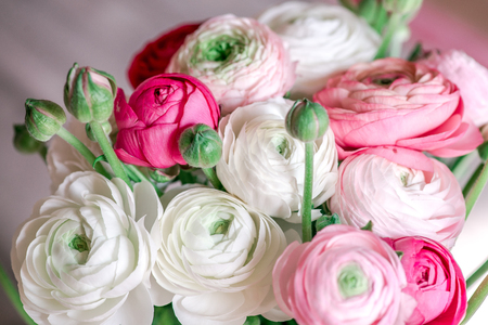 Bouquet of ranunculus of different color
