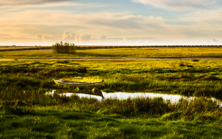 A row boat sits on the side of a small pond, surrounded by a grassy field. Stock Photo