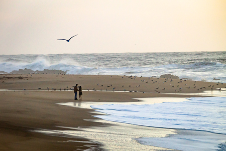 Young couple standing at the beach near the water with seagull flying by. Ocean, Clear Day. Stock Photo