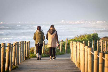 Rear view of two women walking along a wooden boardwalk at the coastline, against a blue sky background. Distant cityscape. Woman holds dog collar. Stockfoto