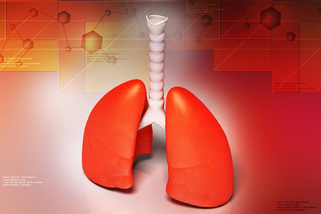 Digital illustration of lungs in coloured background