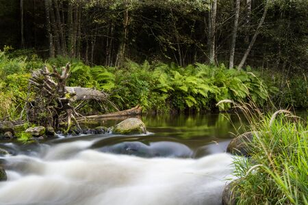 flowing river: Flowing river