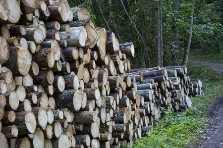 stacked up: Logs stacked up Stock Photo