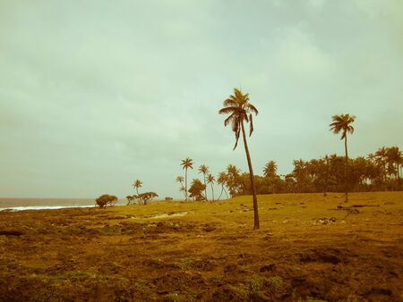 Untouched Tanna Island