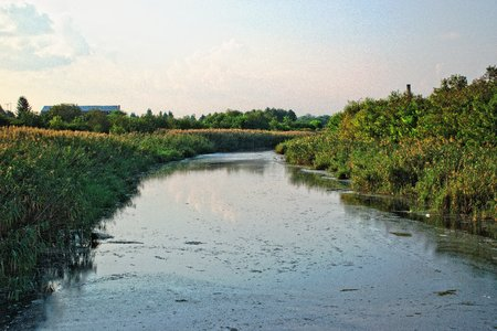 polluted river: Polluted River Landscape