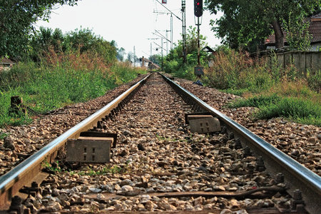 wood railways: Train tracks in the countryside