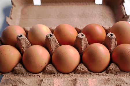 갈색 닭고기 계란 판지에 근접 촬영