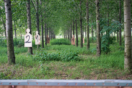 Air soft shooting targets in a forest
