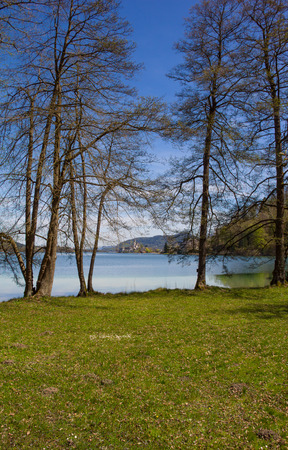 Lake Woerth View To Maria Woerth Through The Trees In Spring Stock Photo