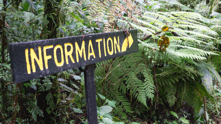 Information sign in the tropical jungle