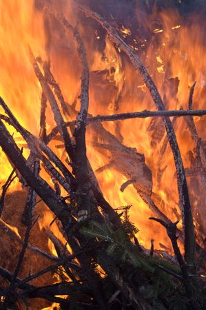 Forest fire - close-up shot of yellowand red flames.