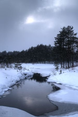 Dark winter landscape with forest reflecting in a pond
