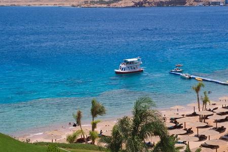 Beach in Egypt - tropical paradise photo